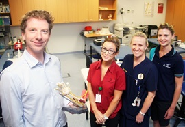 Hand surgeon with occupational therapist, nurse and physiotherapist